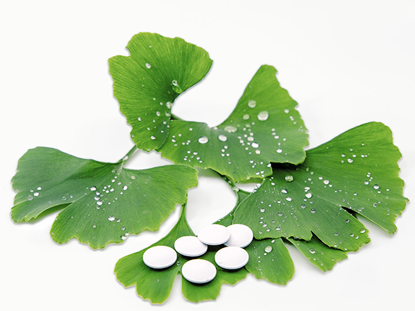 Ginkgo leaves with pills