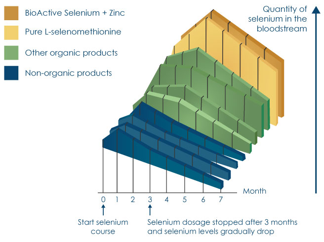 Graph showing better absorption of Pharma Nord's selenium compared to other selenium products
